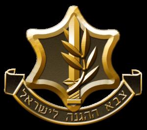 Prizyv v Zahal